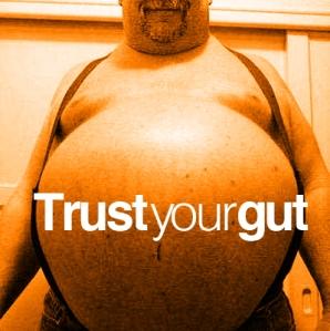Trust Your Gut, The Flawed Guru, Blog