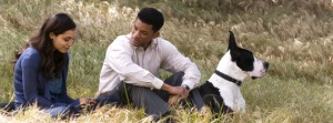 Seven Pounds, Review, Film, Movie, The Flawed Guru